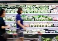 소비자물가 사상 첫 마이너스, 커지는 디플레이션 공포