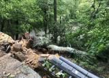 태풍 링링에 합천 250살 천연기념물 나무 꺾였다…문화재 피해 21건
