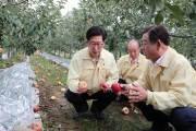 태풍 '링링'으로 3명 사망·12명 부상… 농경지 침수·낙과 피해도 속출