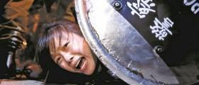 "<!HS>홍콩<!HE> 택했던 '2030' 고학력 중국인 ""위협·차별에 <!HS>홍콩<!HE>행 후회"""