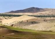 온난화가 바꾼 기막힌 풍경···중국 고비 사막에 풀이 자란다