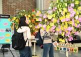 <!HS>한국<!HE>외대 글로벌캠퍼스 진로취업지원센터, '취업희망나무 소망걸기' 행사 개최