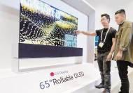 [힘내라! 대한민국 경제] '게임 체인저'로 OLED 선정 … 미래 성장동력으로 육성