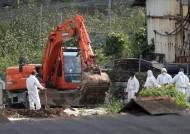 병무청, '아프리카돼지열병·태풍 링링' 재난지역 입영연기 허용