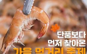 [카드뉴스]단풍보다 먼저 찾아온 가을 먹거리 축제 4