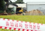돼지열병, 충청권도 뚫렸나···충남 홍성 농가서 첫 의심신고