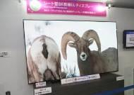 [단독]도쿄올림픽 8K 생중계, 일본은 삼성 아닌 LG 택했다