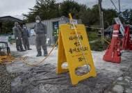 ASF 실직 외국인 올까 무섭다…충북 축산농 근로자 채용 금지