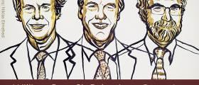 2019년 <!HS>노벨<!HE> 생리의학상에 윌리엄 케일린, 피터 랫클리프, 그랙 세멘자