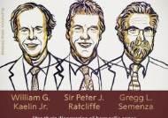 2019년 노벨 생리의학상에 윌리엄 케일린, 피터 랫클리프, 그랙 세멘자