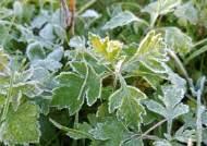 설악산 얼음 얼었다···올가을 첫 한파특보, 낮 기온은 20도