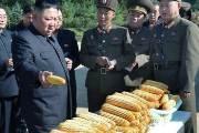 김정은 한달만에 등장···이번엔 미사일 대신 옥수수 들었다