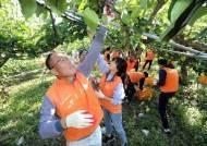 한화, 창립기념 직원 5000명 릴레이 봉사 활동