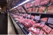 """연천 돼지 전체 살처분에 농가들 반발···""""멧돼지부터 없애라"""""""
