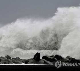 태풍 '하기비스' 물폭탄에…<!HS>후쿠시마<!HE> 방사성 폐기물 유실