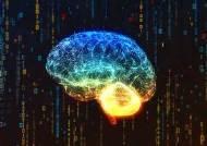 [이광형의 퍼스펙티브] 인간 지능과 컴퓨터 연결하는 초지능 시대 선도해야