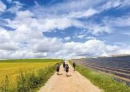 [비즈스토리] 프랑스 길, 포르투갈 길 … '산티아고 순례길' 어느 길 걸어볼까
