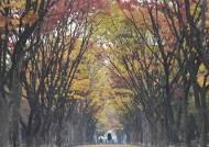 동해안·제주 내일 오전까지 가을비…주말 오후에 맑아진다