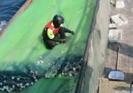 해수부, 촘촘한 그물 사용해 불법 조업한 중국어선 2척 나포