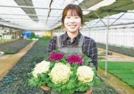 [국민의 기업] 유통시장 개척, 품종 국산 전환 노력농업과 ICT 융복합 '스마트팜' 선도
