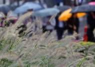 동해안·제주 내일 아침까지 비···주말부터 전국 쌀쌀해진다