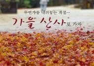 [카드뉴스] 무언가를 내려놓는 계절…가을 산사로 가자