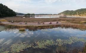 공짜로 즐기는 화진포·송지호 자전거 나들이