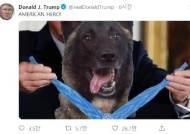 트럼프 '가짜뉴스 내로남불'···'훈장 건 군견' 사진은 가짜였다