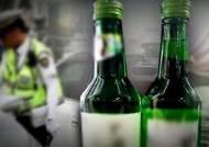 작년 男 10명 중 1명 음주운전, 2030 여성 고위험 음주 늘어