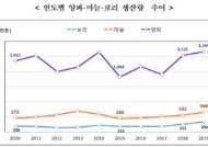 올해 양파 생산량 역대 최대…가격은 더 폭락하는 '풍년'의 역설