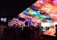 중국 업체 진출로 내년 OLED TV 시장 확 커진다