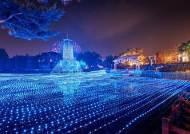[주말&여기] 수도권에서 가장 가까운 겨울빛 축제 '루나 해피 홀리데이즈'