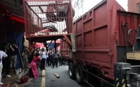 폐업 후 몰래 개고기 팔다 적발된 옛 구포개시장 상인…재발 방지 약속