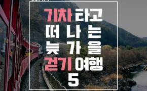 [카드뉴스] 기차 타고 떠나는 늦가을 걷기 여행 5