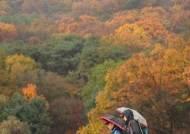 [날씨 브리핑] 잦은 가을비…나들이는 주말 오후에 하세요