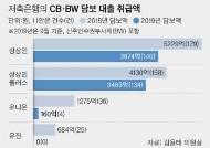 CB담보대출의 유혹…저축은행이 '유령회사' 돈줄 됐다