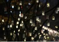 [서소문사진관]소원 반딧불이 밝힌 덕수궁 돌담길…서울문화재단 공공예술프로젝트
