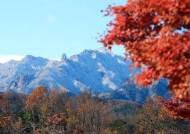 [서소문사진관]가을과 겨울 사이, 이맘때만 볼 수 있는 비현실적 풍경들