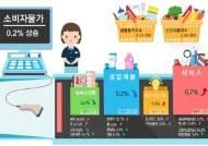 11월 소비자물가 상승률 0.2%…소폭 상승세 전환