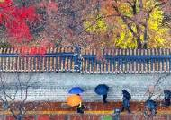 서울 내일 춥고 눈 온다···충남·전북엔 최고 8㎝