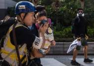 새 떼죽음, 2개월 아이도 피해···홍콩 '다이옥신 최루탄' 공포
