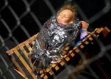 [서소문사진관] 새장에 따로 갇힌 아기 예수 가족, 그들이 오늘 미국에 오면
