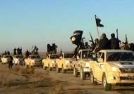 터키, 알바그다디 최측근 등 IS 조직원 19명 체포