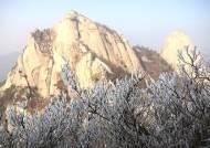 경기·강원북부 밤사이 최고 8cm 많은 눈…아침 빙판길 주의