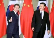 """中언론 """"文, 홍콩 신장문제 중국 내정으로 인식"""" 보도 논란"""