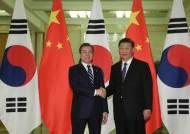 """[속보] 시진핑 """"한중, 지역 평화·안정·번영과 자유무역 수호 공감대"""""""
