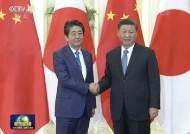"""6개월 만에 만난 시진핑·아베, """"한반도 비핵화 위해 협력"""""""