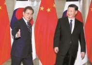 """문 대통령 한한령 침묵…시진핑은 """"사드 해결을"""""""