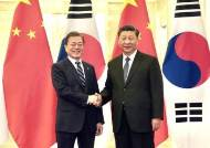 """""""시진핑 내년 상반기 방한 확정적"""" 靑 이례적 돌연 브리핑 왜"""