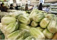 중국 김치로 끓인 찌개가 국내산? 원산지 바꿔 760㎏ 판 식당